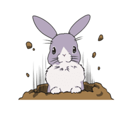 Momo the rabbit! sticker #8355930