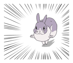 Momo the rabbit! sticker #8355932