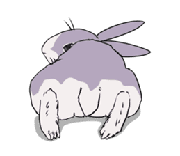 Momo the rabbit! sticker #8355935