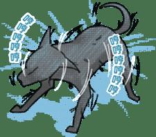 Formosan Mountain Dog sticker #8419364