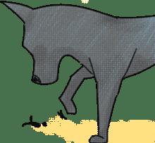 Formosan Mountain Dog sticker #8419374