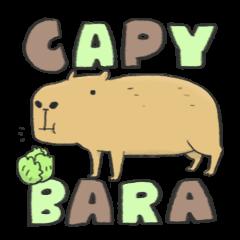 Hey Capybara!