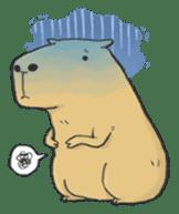 Hey Capybara! sticker #8432647
