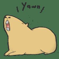 Hey Capybara! sticker #8432652
