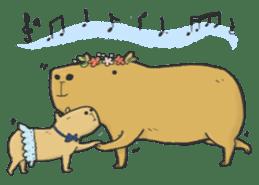Hey Capybara! sticker #8432659