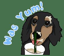 Cute Dachshund Ryu!! Vol 2 (English) sticker #8436945