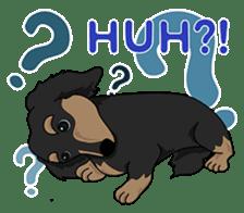 Cute Dachshund Ryu!! Vol 2 (English) sticker #8436957