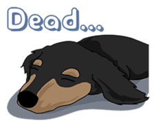 Cute Dachshund Ryu!! Vol 2 (English) sticker #8436960