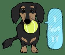 Cute Dachshund Ryu!! Vol 2 (English) sticker #8436967