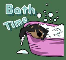 Cute Dachshund Ryu!! Vol 2 (English) sticker #8436976