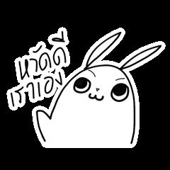 Pipoiy indy rabbit