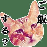 balzo-waruyama sticker #8463539