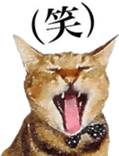 balzo-waruyama sticker #8463555