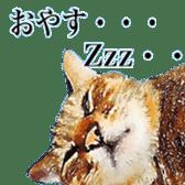 balzo-waruyama sticker #8463557