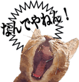 balzo-waruyama sticker #8463558