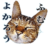 balzo-waruyama sticker #8463562