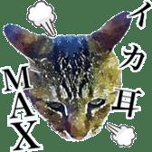 balzo-waruyama sticker #8463567
