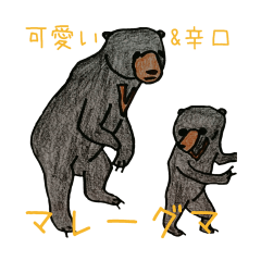 Here we go! Mr.Sun bear