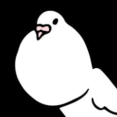 chicken breast poropin