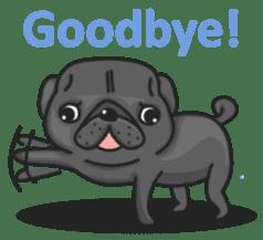 Kuro Pug sticker #8549897
