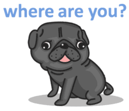 Kuro Pug sticker #8549898