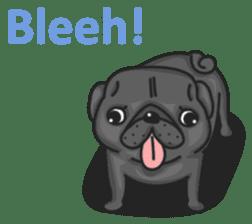 Kuro Pug sticker #8549899