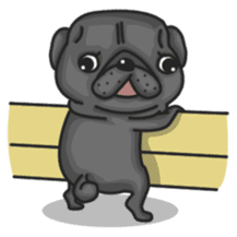 Kuro Pug sticker #8549914