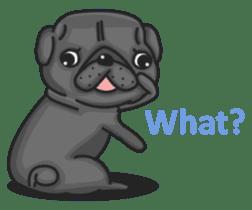 Kuro Pug sticker #8549916