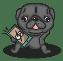 Kuro Pug sticker #8549920