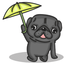 Kuro Pug sticker #8549926