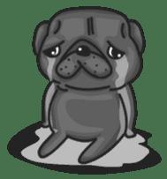 Kuro Pug sticker #8549929