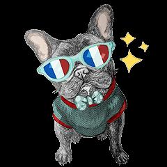 Bonjour! Bonjour! Black French Bulldog