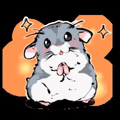 Lovely hamster SHISHAMO!