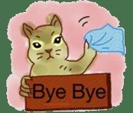 Squirrel Cutie sticker #8585488