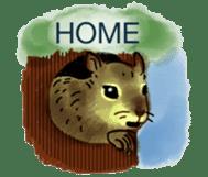 Squirrel Cutie sticker #8585497