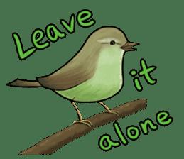 We Are The Birds! sticker #8605473