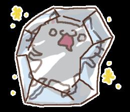 Greeting winter cat sticker #8672573