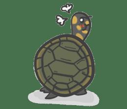 Turtles like to sleep sticker #8712027