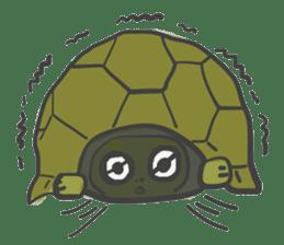 Turtles like to sleep sticker #8712038