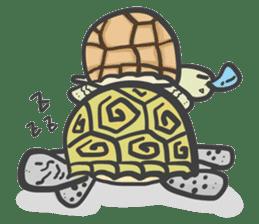 Turtles like to sleep sticker #8712046