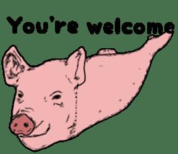 Pig eel. sticker #8761301