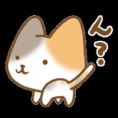 Goofy cat.