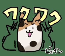 Camellia-Nyanko-Sticker sticker #8777992