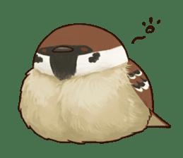 fat sparrow ver.2 sticker #8834778