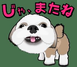 Cute Shih Tzu sticker #8836207