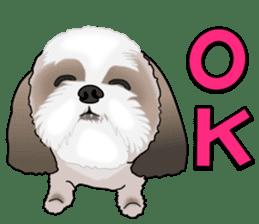 Cute Shih Tzu sticker #8836213