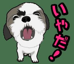 Cute Shih Tzu sticker #8836215