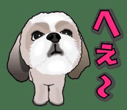 Cute Shih Tzu sticker #8836216