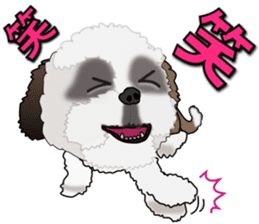 Cute Shih Tzu sticker #8836224