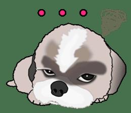 Cute Shih Tzu sticker #8836226